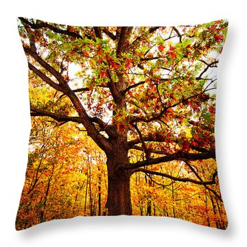 Fallsplosion Throw Pillow