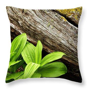 False Hellebore Fallen Log Throw Pillow