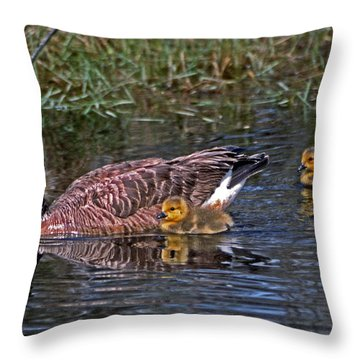Family Affair Throw Pillow by Skip Willits