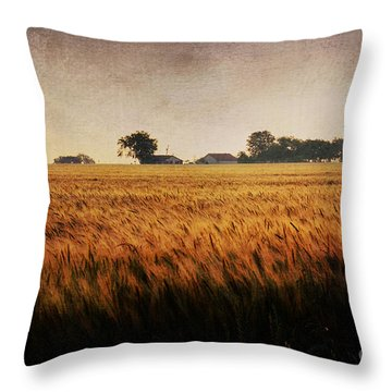 Family Farm Throw Pillow by Lisa Holmgreen