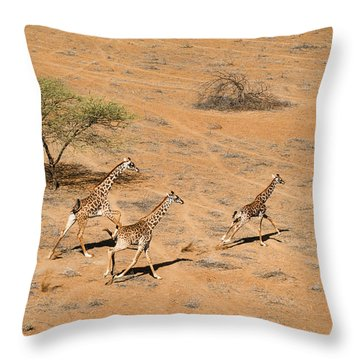 Kenya Throw Pillows
