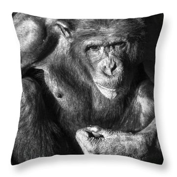 Throw Pillow featuring the photograph Family Portrait by Ross G Strachan