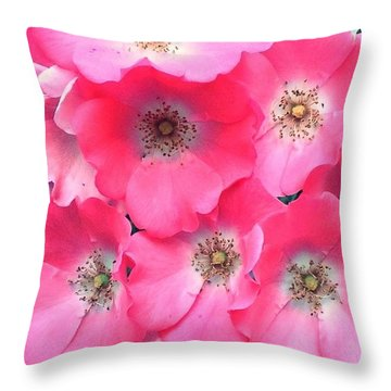 Trellis Pinks Throw Pillow