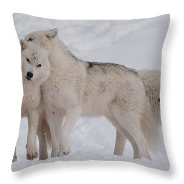 Family Ties Throw Pillow