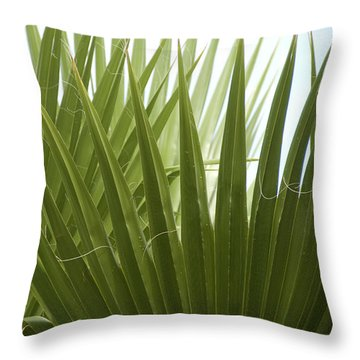 Fan Fair Throw Pillow