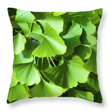 Fan Shaped Leaves Throw Pillow