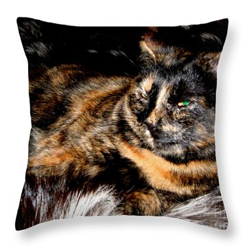 Fancy Cat Throw Pillow