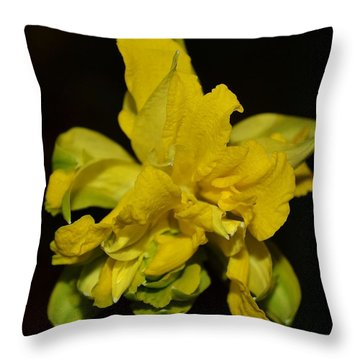 Throw Pillow featuring the photograph Fancy Daffodil by Mary Zeman