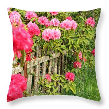 Fancy Fence Throw Pillow
