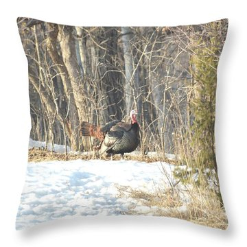 Throw Pillow featuring the photograph Fanning by Dacia Doroff