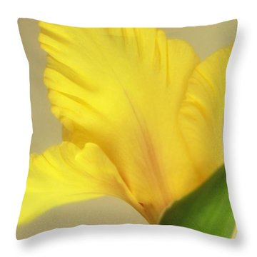 Fanning Glady Throw Pillow by Deborah  Crew-Johnson