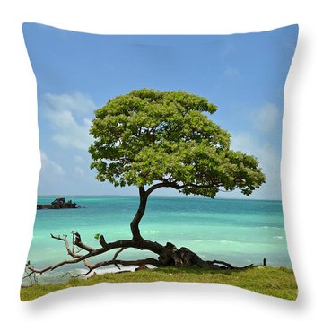 Fanning Tree On Beach Throw Pillow by Eva Kaufman