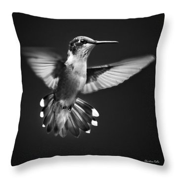 Fantail Hummingbird Throw Pillow