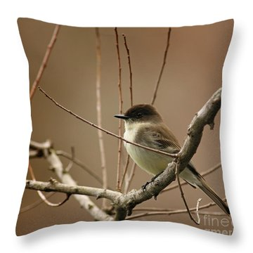 Fantastic Phoebe Throw Pillow