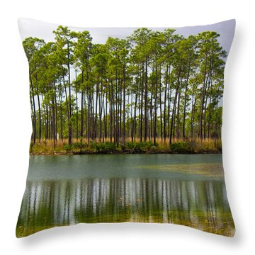 Fantasy Island In The Florida Everglades Throw Pillow