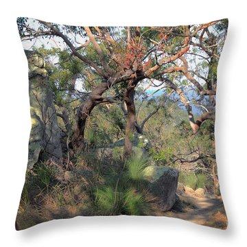 Fantasy Land Throw Pillow