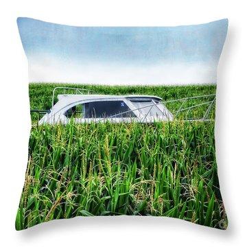 Far Afield Throw Pillow by Edward Fielding