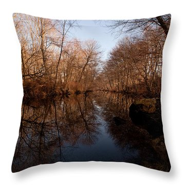 Far Mill River Reflects Throw Pillow by Karol Livote