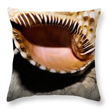 Faraway Places Throw Pillow by Robyn King