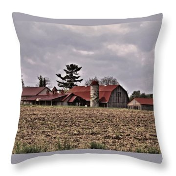 Farm 2 Throw Pillow