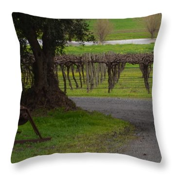 Farm And Vineyard Throw Pillow by Cheryl Miller