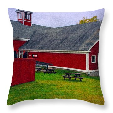Farm Throw Pillow by Bill Howard