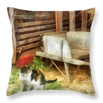 Farm Cat Throw Pillow by Susan Savad
