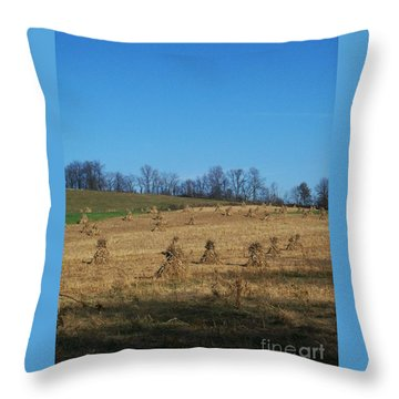 Throw Pillow featuring the photograph Farm Days by Sara  Raber