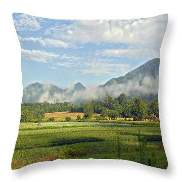 Farm In The Valley Throw Pillow by Susan Leggett