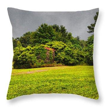 Farm Journal - Hidden History Throw Pillow by Paulette B Wright