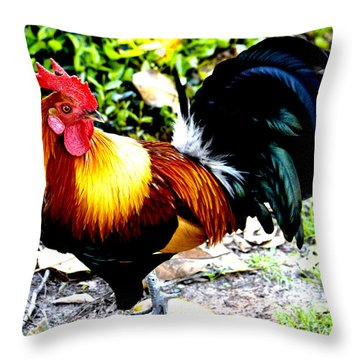 Throw Pillow featuring the photograph Farm Life by Janice Spivey