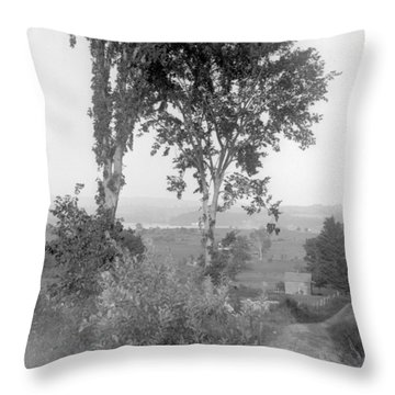 Farm Road Throw Pillow