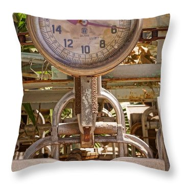 Throw Pillow featuring the photograph Farm Scale by Kerri Mortenson