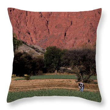Farmer In Field In Northern Argentina Throw Pillow by James Brunker
