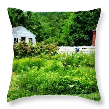 Farmer's Garden Throw Pillow by Susan Savad