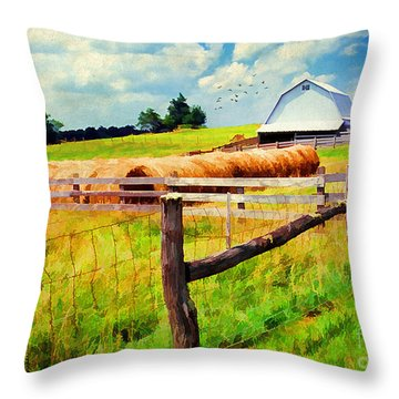 Farming Throw Pillow by Darren Fisher