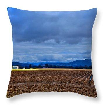 Farms Of Mount Vernon Washington Throw Pillow