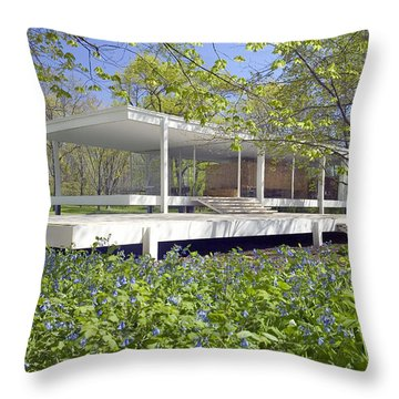 Farnsworth House Illinois Throw Pillow by Martin Konopacki