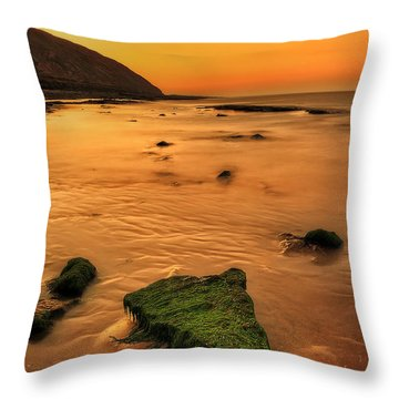Fashion Rock Throw Pillow by Svetlana Sewell