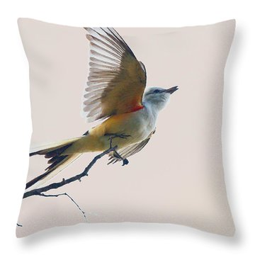Fast Get Away Throw Pillow
