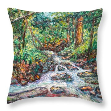 Fast Water Wildwood Park Throw Pillow by Kendall Kessler