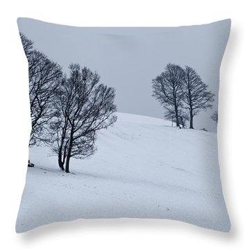 Throw Pillow featuring the photograph Faster Faster by Mick Flynn
