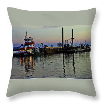 Fat Cat At Sunset Throw Pillow by Joseph Coulombe