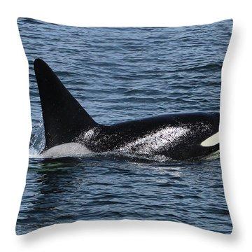 Fat Fin Aka Ca171b Throw Pillow