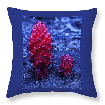 Throw Pillow featuring the photograph Father And Son by Sean Sarsfield