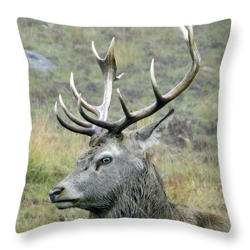Stag Party The Series Father To Be. Throw Pillow