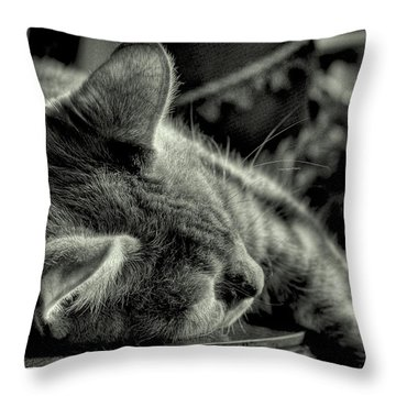 Fatigued Feline Throw Pillow by David Patterson