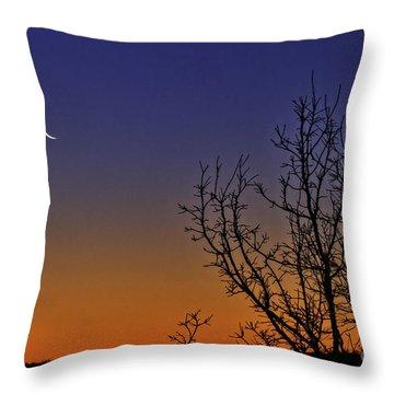 Favorite Moon Throw Pillow