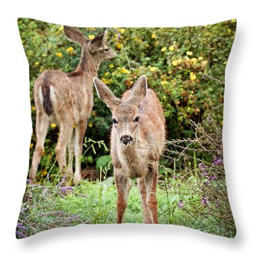 Throw Pillow featuring the photograph Fawns Eating Flowers by Peggy Collins