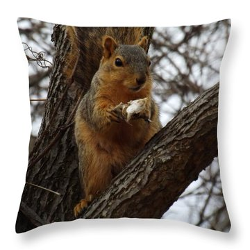 Feasting On Fish Fox Squirrel Throw Pillow by Sara  Raber